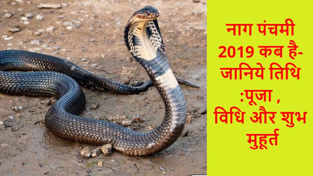 नाग पंचमी 2019 कब है- जानिये तिथि _पूजा , विधि और शुभ मुहूर्त